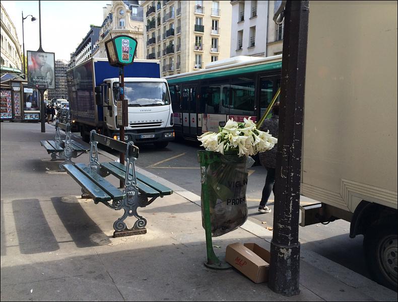11 am, rue de Sevrès; pic: Cynthia Rose